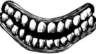 乳牙与恒牙的区别